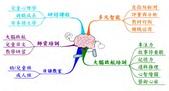大腦啟航標誌圖:大腦啟航-營運項目.jpg