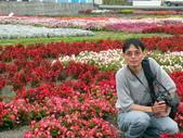980303~0305台東之旅:DSCN0741.jpg