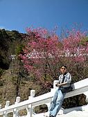980303~0305台東之旅:DSCN0710.jpg
