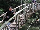 970120~0121 杉林溪及溪頭之旅:DSCN0740.JPG