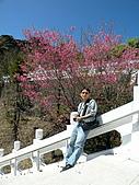 980303~0305台東之旅:DSCN0709.jpg