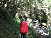 三叉、向陽&嘉明湖-2008秋:IMG_3753.jpg