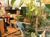 98.07.13綠世界生態農場:DSCN1538.jpg