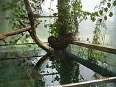 98.07.13綠世界生態農場:DSCN1541.jpg
