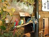 98.07.13綠世界生態農場:DSCN1534.jpg