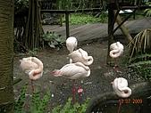 98.07.13綠世界生態農場:DSCN1548.jpg
