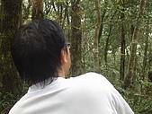 松蘿湖:IMGP7606