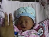 剛出生時:1488572531.jpg
