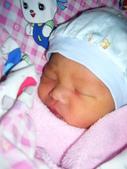 剛出生時:1488572517.jpg