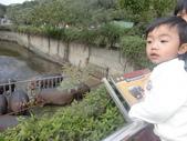 990202動物園:1577236802.jpg