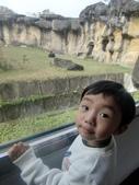 990202動物園:1577236822.jpg