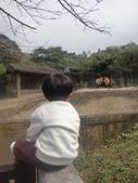 990202動物園:1577236828.jpg