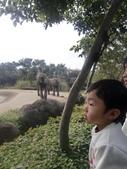 990202動物園:1577236847.jpg