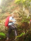 高台山+島田小.中.大.山2010-05-16 :高台山+島田小中大山2010-05-16 045.jpg