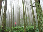 高台山+島田小.中.大.山2010-05-16 :高台山+島田小中大山2010-05-16 002.jpg