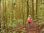 高台山+島田小.中.大.山2010-05-16 :高台山+島田小中大山2010-05-16 017.jpg