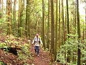 高台山+島田小.中.大.山2010-05-16 :高台山+島田小中大山2010-05-16 018.jpg