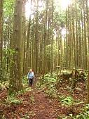 高台山+島田小.中.大.山2010-05-16 :高台山+島田小中大山2010-05-16 019.jpg