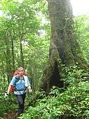 高台山+島田小.中.大.山2010-05-16 :高台山+島田小中大山2010-05-16 005.jpg