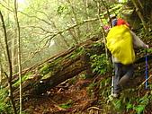 高台山+島田小.中.大.山2010-05-16 :高台山+島田小中大山2010-05-16 064.jpg