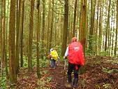 高台山+島田小.中.大.山2010-05-16 :高台山+島田小中大山2010-05-16 021.jpg