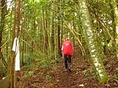 高台山+島田小.中.大.山2010-05-16 :高台山+島田小中大山2010-05-16 022.jpg