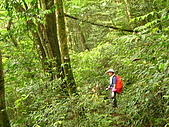 高台山+島田小.中.大.山2010-05-16 :高台山+島田小中大山2010-05-16 065.jpg