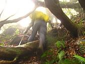 高台山+島田小.中.大.山2010-05-16 :高台山+島田小中大山2010-05-16 057.jpg