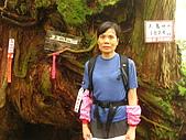 高台山+島田小.中.大.山2010-05-16 :高台山+島田小中大山2010-05-16 059.jpg