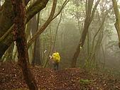 高台山+島田小.中.大.山2010-05-16 :高台山+島田小中大山2010-05-16 035.jpg