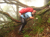 高台山+島田小.中.大.山2010-05-16 :高台山+島田小中大山2010-05-16 041.jpg
