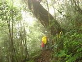 高台山+島田小.中.大.山2010-05-16 :高台山+島田小中大山2010-05-16 062.jpg