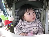 110207 溪州公園賞花:110207HsiChou08.JPG