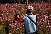 110207 溪州公園賞花:110207HsiChou88.JPG