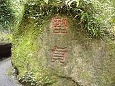 溪頭小半天之旅:P1040173.JPG