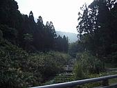 溪頭小半天之旅:P1040162.JPG