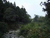 溪頭小半天之旅:P1040164.JPG