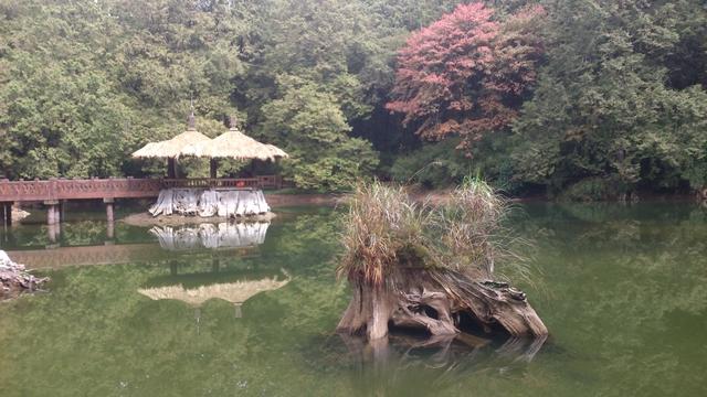 1041203~1208東京橫濱:DSC_0165.jpg