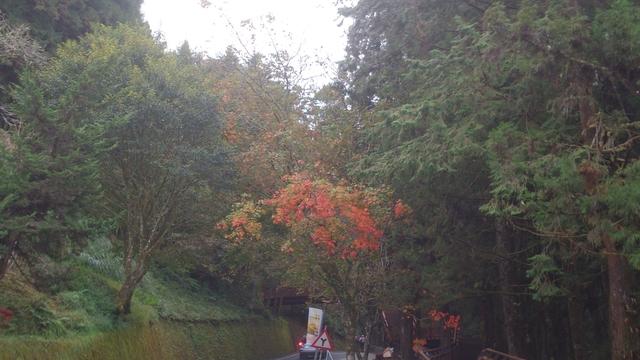 1041203~1208東京橫濱:DSC_0225.jpg