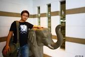 泰國Day5:IMG_6278.jpg