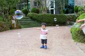 2014-06-14 - 捷博溪頭二日遊:A-0012.jpg