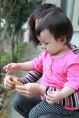 2012-04-07 - 甲仙:DPP_0007.JPG