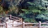 012 Taiwan landscap台灣風情畫吉他家施夢濤攝影作品Guitarist Albert:Taiwan landscap台灣風情畫012吉他家施夢濤  (3).jpg