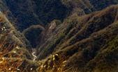012 Taiwan landscap台灣風情畫吉他家施夢濤攝影作品Guitarist Albert:Taiwan landscap台灣風情畫016吉他家施夢濤  (2).jpg