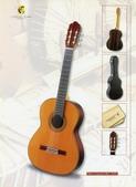 *3 西班牙吉他古典吉他品牌推薦~型號和材料*進口總代理:進口古典吉他061進口西班牙吉他Antonio Sanchez Guitar.jpg