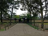 695奈良東大寺 南大門 大佛殿 世界最大木建築:奈良東大寺038南大門大佛殿吉他家施夢濤老師.jpg