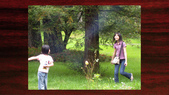 534 武陵農場 櫻花鉤吻鮭 七家灣溪:00085武陵農場櫻花鉤吻鮭七家灣溪.jpg