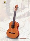 *3 西班牙吉他古典吉他品牌推薦~型號和材料*進口總代理:進口古典吉他011進口西班牙吉他Antonio Sanchez Guitar.jpg