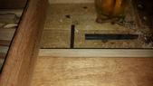 010 原木古典吉他老師的全手工橡木櫥櫃-實木板材角材木材行原木家具訂做價:00167原木古典吉他老師的全手工全單版橡木櫥櫃.jpg