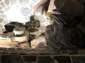 010 軌道燈投射燈工程設計製作LED燈魚池假山照明攝影燈光:軌道燈投射燈工程設計製作LED燈魚池假山照明攝影燈光00188.jpeg